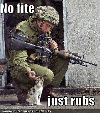funny-pictures-soldier-and-cat